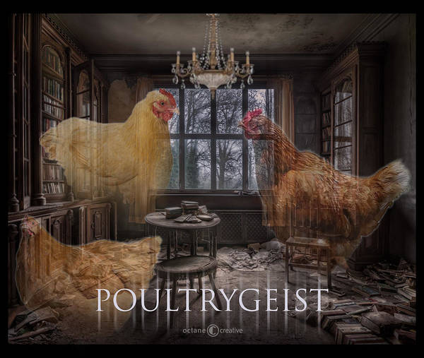 Photograph - Poultrygeist by Tim Nyberg