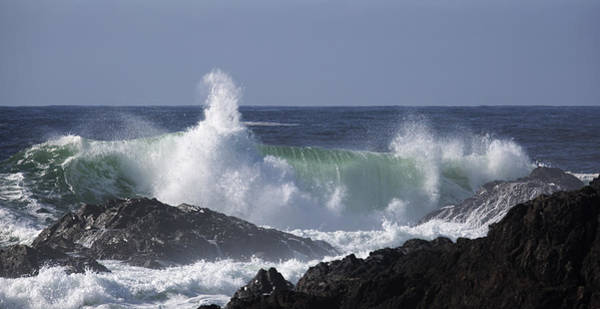Photograph - Pounding Surf by Randy Hall