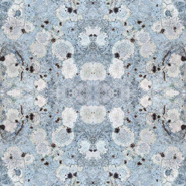 Wall Art - Mixed Media - Powder Blue Pattern by Christina Rollo
