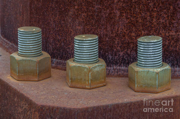 Photograph - Power Line Bolts by Dale Powell