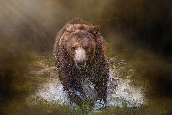Digital Art - Power Of The Grizzly by Nicole Wilde