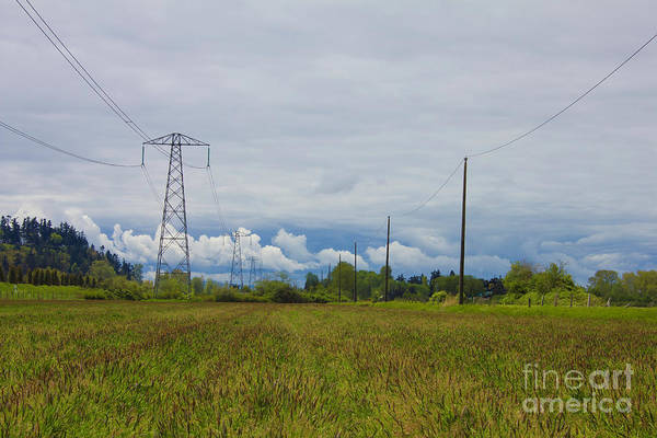 Photograph - Powerlines Landscape by Donna L Munro