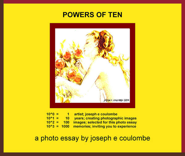 Photograph - Powers Of Ten In Yellow by Joseph Coulombe