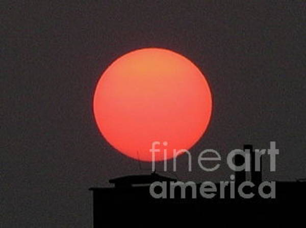Photograph - Poznan Sun by Mary Kobet