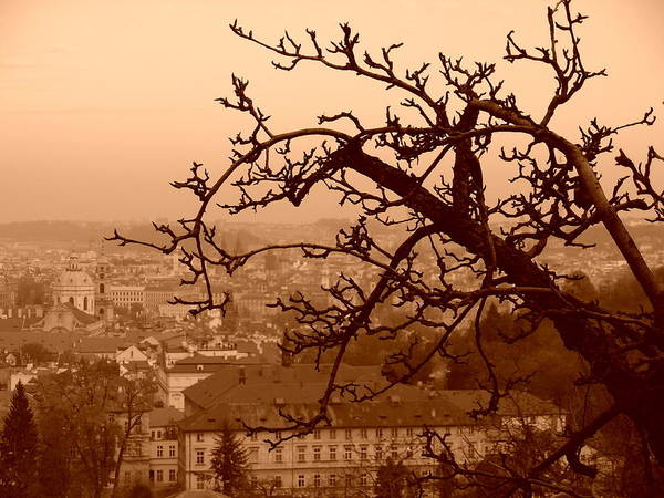 Photograph - Prague by Christopher Brown