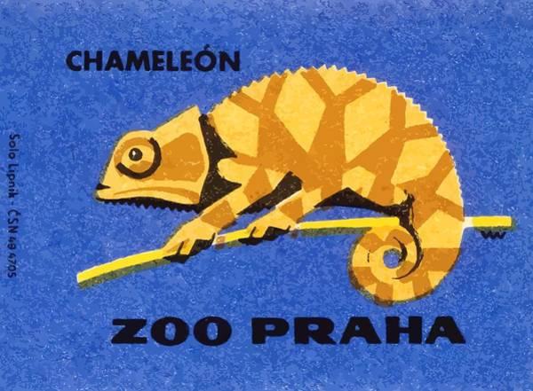 Lizards Digital Art - Prague Zoo Chameleon Matchbox Label by Retro Graphics