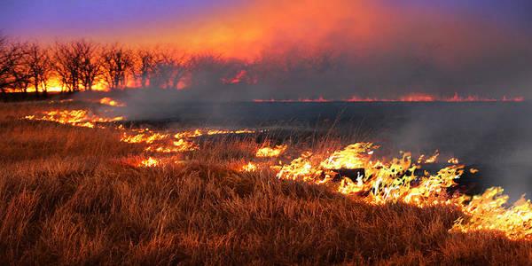 Photograph - Prairie Burn by Rod Seel