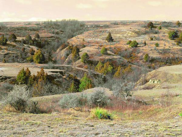 Photograph - Prairie Edge Reverie by Cris Fulton