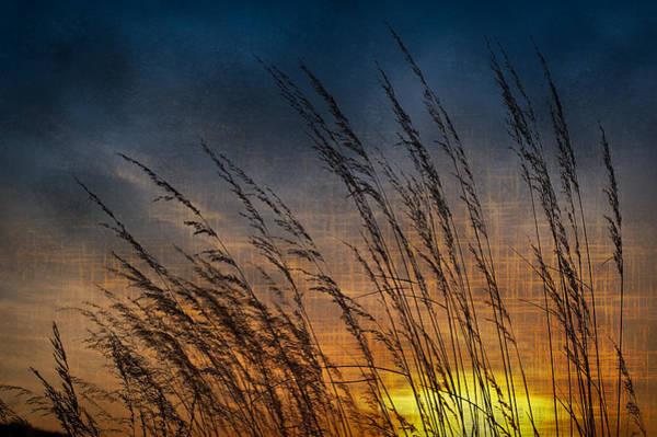 Illinois Art Photograph - Prairie Grass Sunset Patterns by Steve Gadomski