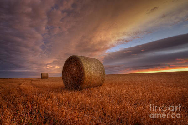 Hay Bale Wall Art - Photograph - Prairie Harvest by Dan Jurak