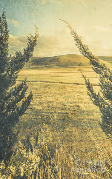 Distant Trees Wall Art - Photograph - Prairie Hill by Jorgo Photography - Wall Art Gallery
