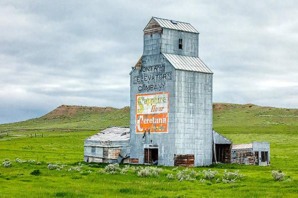 Photograph - Prairie Sentinel by Todd Klassy