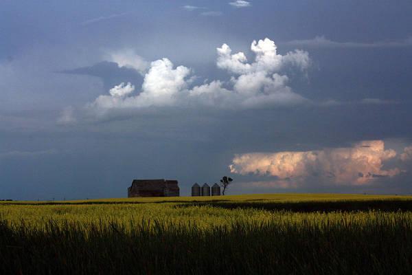 Photograph - Prairie Sky by David Matthews