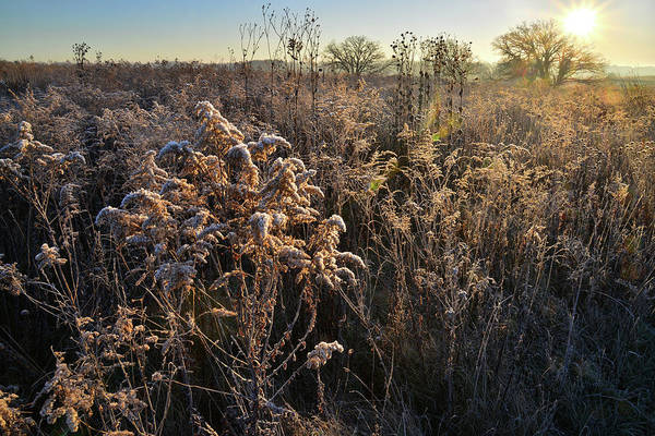 Photograph - Prairie Sunrise At Prairieview Educational Center by Ray Mathis