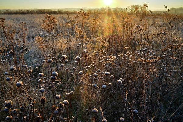 Photograph - Prairieview Education Centeer Prairie by Ray Mathis
