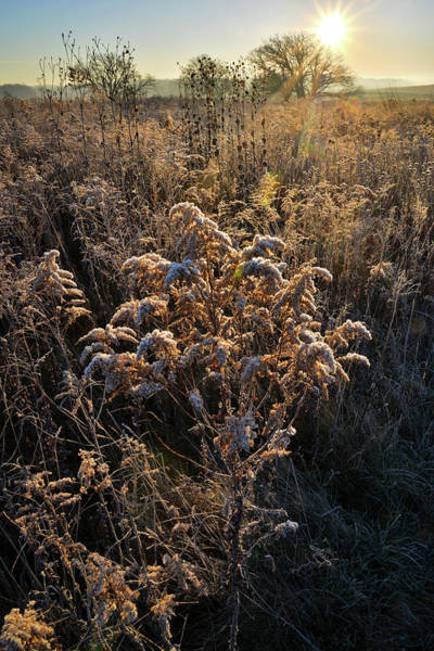 Photograph - Prairieview Sunrise On A Frosty Morning by Ray Mathis