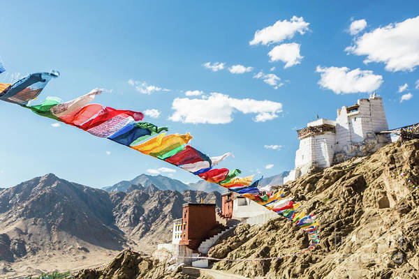 Photograph - Prayer Flag In Tsemo Castle In Leh, Ladakh, India by Didier Marti