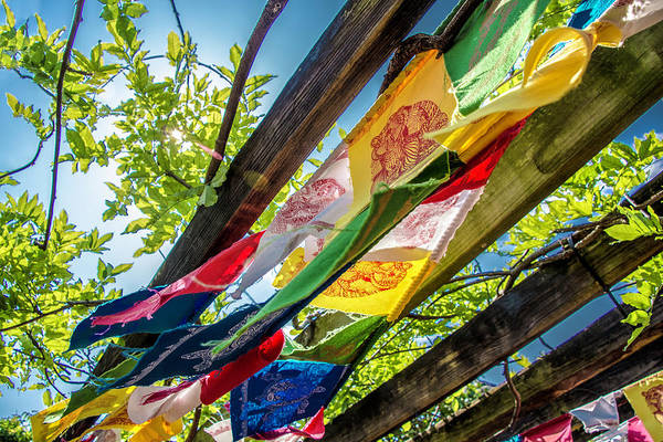 Photograph - Prayer Flags by Chris Coffee