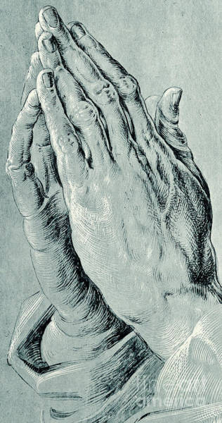 Close Up Drawing - Praying Hands, Also Known As Study Of The Hands Of An Apostle  by Albrecht Durer
