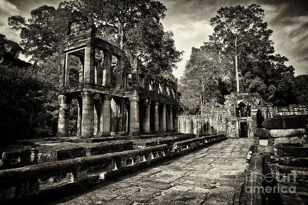 Photograph - Preah Khan Temple, Angkor Wat, Cambodia by Sam Antonio Photography