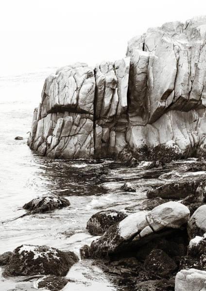 Photograph - Precarious At Pebble Beach by Marilyn Hunt
