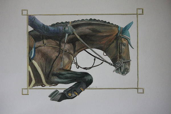 Warmbloods Drawing - Precision by Alyson Weiss
