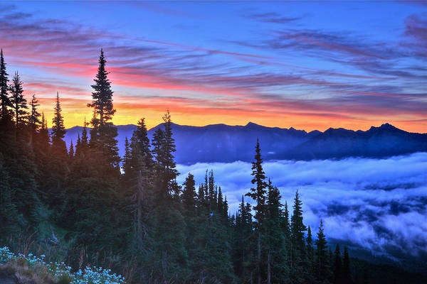 Photograph - Predawn At Sunrise Point by Don Mercer