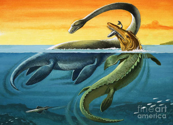 Wall Art - Painting - Prehistoric Creatures In The Ocean by English School