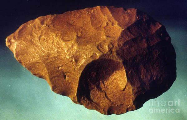 Photograph - Prehistoric Flint Blade by Granger