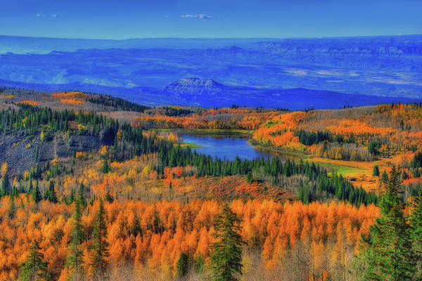 Grand Mesa National Forest Photograph - Prelude In Gold And Blue by Midori Chan