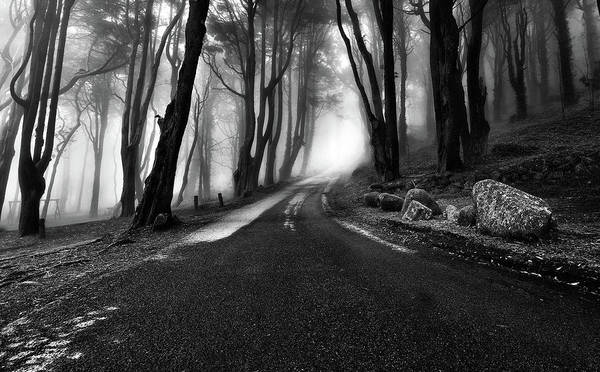 Sintra Photograph - Premonition by Jorge Maia