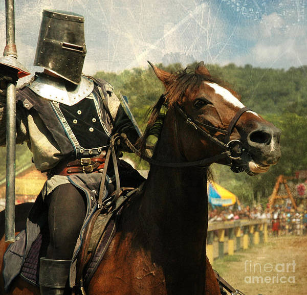 Steed Photograph - Prepare The Joust by Paul Ward
