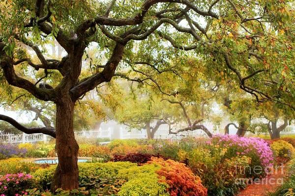 Photograph - Prescott Park #2 by Marcia Lee Jones