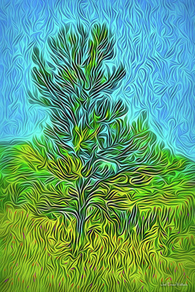 Digital Art - Presence Of Pine by Joel Bruce Wallach