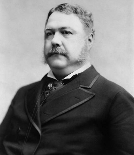 Republican Party Photograph - President Chester A. Arthur - 1882 by War Is Hell Store