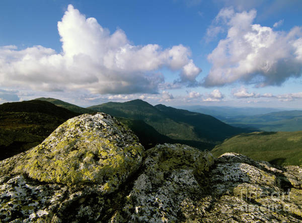 Photograph - Presidential Range - White Mountains New Hampshire by Erin Paul Donovan