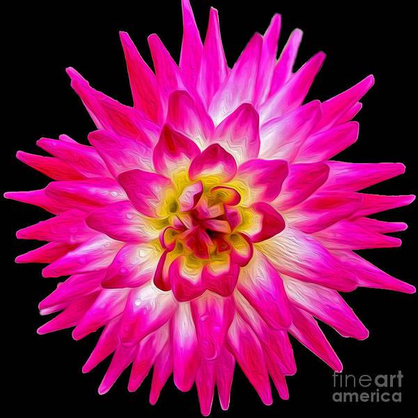 Photograph - Prettiest In Pink by Jilian Cramb - AMothersFineArt