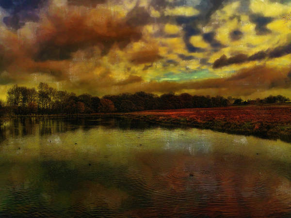 Digital Art - Pretty At The Ponds by Leigh Kemp