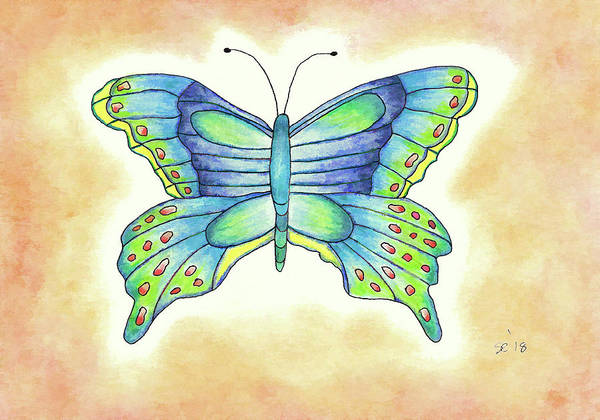 Drawing - Pretty Butterfly by Susan Campbell