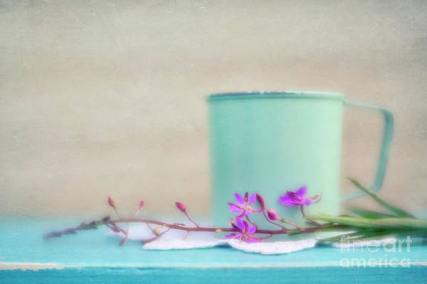 Fireweed Photograph - Pretty In Pastel 1 by Priska Wettstein