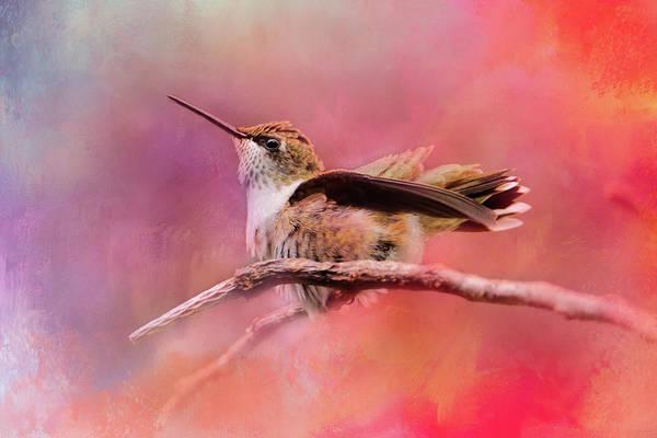 Photograph - Pretty In Pink Hummingbird Art by Jai Johnson