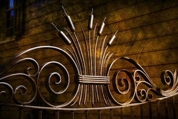 Artful Photograph - Pretty Iron Gate In Charleston by Susanne Van Hulst