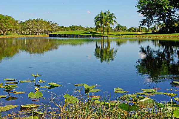 Wall Art - Photograph - Tropical Lake by Zal Latzkovich