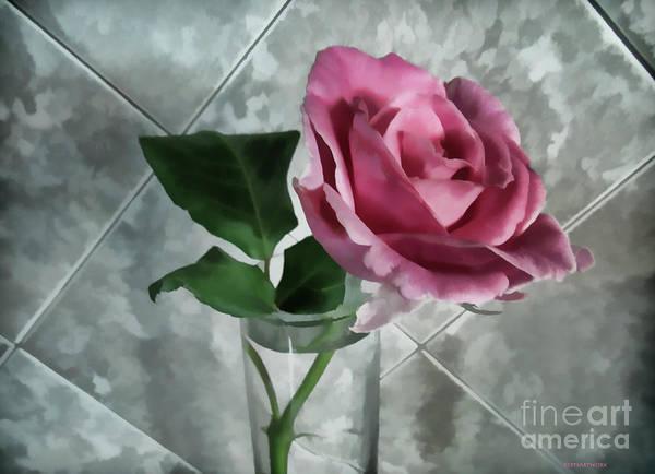 Photograph - Pretty Pink Rose by Roberta Byram
