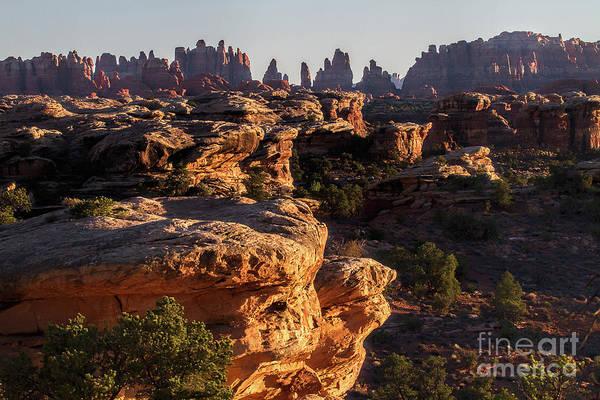 Photograph - Prickle Ridge by Jim Garrison