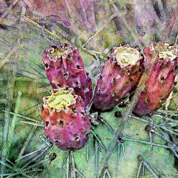 Digital Art - Prickly Pear by Barbara Berney