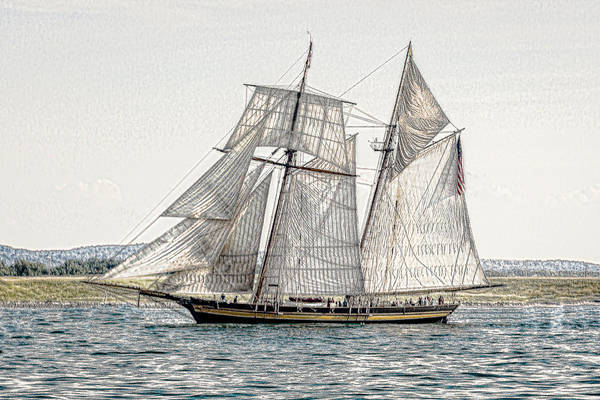 Photograph - Pride Of Baltimore A Two Masted Schooner by Jack R Perry