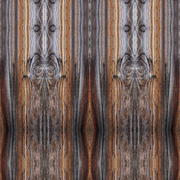 Digital Art - Priestesses Seen On A Picket Fence by Julia L Wright