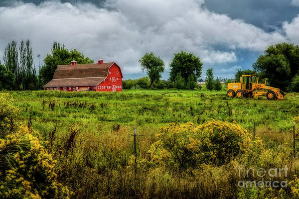 Photograph - Primary Colors by Jon Burch Photography