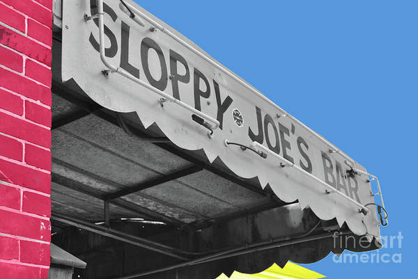 Photograph - Primary Sloppy Joes by Jost Houk